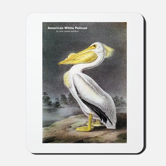Audubon American White Pelican Mousepad