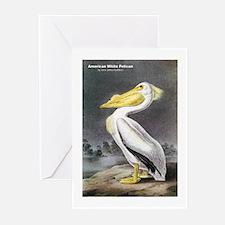 Audubon American White Pelican Greeting Cards (Pk