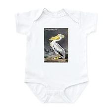 Audubon American White Pelican Infant Bodysuit