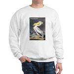 Audubon American White Pelican (Front) Sweatshirt