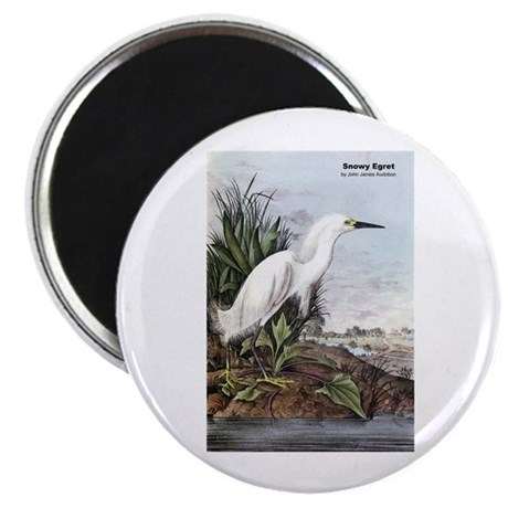 Audubon Snowy Egret Bird Magnet