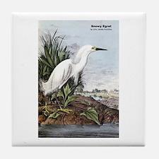 Audubon Snowy Egret Bird Tile Coaster