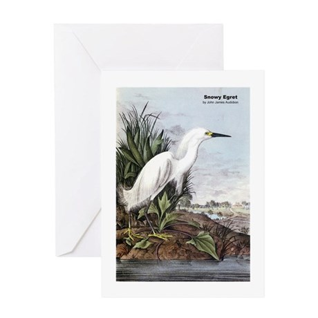 Audubon Snowy Egret Bird Greeting Card