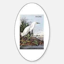 Audubon Snowy Egret Bird Oval Decal