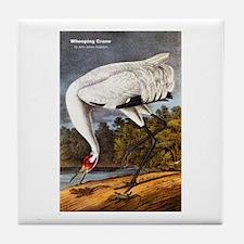 Audubon Whooping Crane Bird Tile Coaster