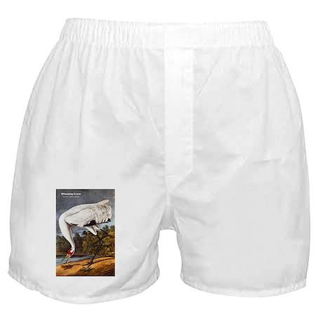 Audubon Whooping Crane Bird Boxer Shorts