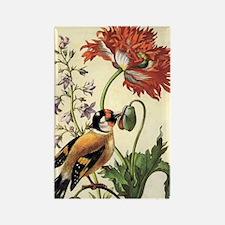 Garden Poppy by Merian Rectangle Magnet