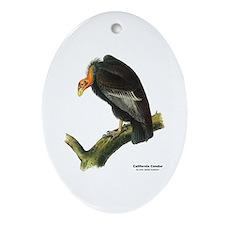 Audubon California Condor Bird Oval Ornament