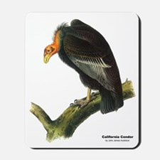 Audubon California Condor Bird Mousepad