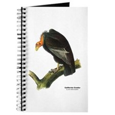 Audubon California Condor Bird Journal