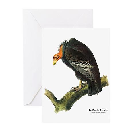 Audubon California Condor Bird Greeting Cards (Pk