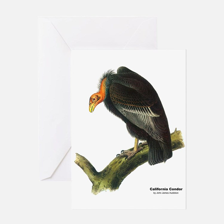Audubon California Condor Bird Greeting Card
