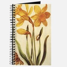 Daffodil by Merian Journal