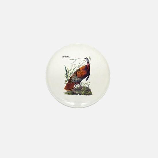 Audubon Wild Turkey Bird Mini Button