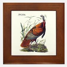 Audubon Wild Turkey Bird Framed Tile