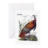 Audubon turkey Greeting Cards (20 Pack)