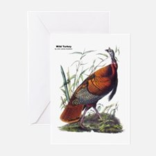 Audubon Wild Turkey Bird Greeting Cards (Pk of 20)