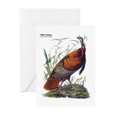 Audubon Wild Turkey Bird Greeting Card