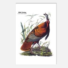 Audubon Wild Turkey Bird Postcards (Package of 8)