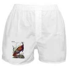 Audubon Wild Turkey Bird Boxer Shorts