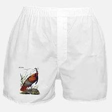 Audubon Wild Turkey Bird Boxer Shorts