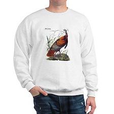 Audubon Wild Turkey Bird Jumper