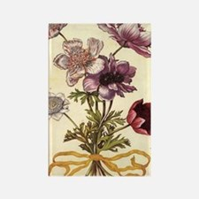Anemones by Merian Rectangle Magnet