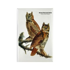 Audubon Great Horned Owls Rectangle Magnet (10 pac