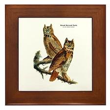 Audubon Great Horned Owls Framed Tile