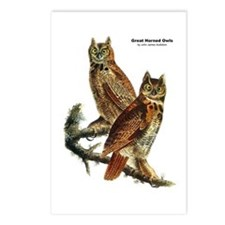Audubon Great Horned Owls Postcards (Package of 8)