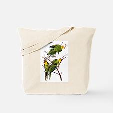 Audubon Carolina Parakeet Birds Tote Bag