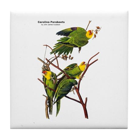 Audubon Carolina Parakeet Birds Tile Coaster