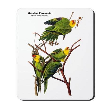 Audubon Carolina Parakeet Birds Mousepad
