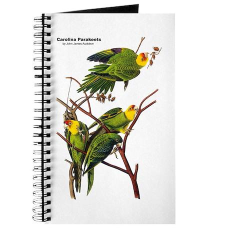 Audubon Carolina Parakeet Birds Journal