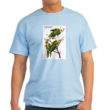 Audubon Carolina Parakeet Birds T-Shirt