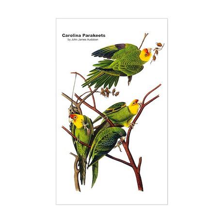 Audubon Carolina Parakeet Birds Sticker (Rectangul