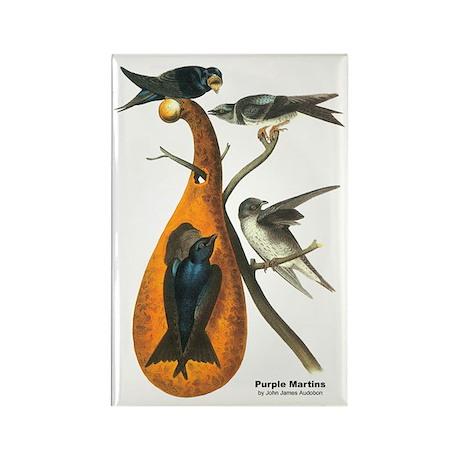 Audubon Purple Martins Bird Rectangle Magnet (10 p