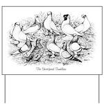 Shortface Tumbler Pigeons Yard Sign