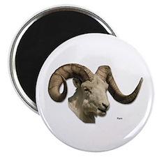 "Ram Sheep Horn 2.25"" Magnet (10 pack)"