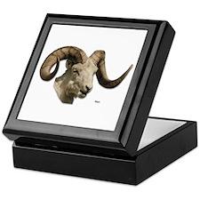 Ram Sheep Horn Keepsake Box