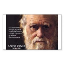Charles Darwin: Evolution Rectangle Decal