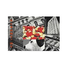 Albany Collage Rectangle Magnet