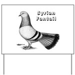 Syrian Fantail Pigeon Yard Sign