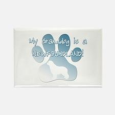 Newfoundland Granddog Rectangle Magnet (10 pack)