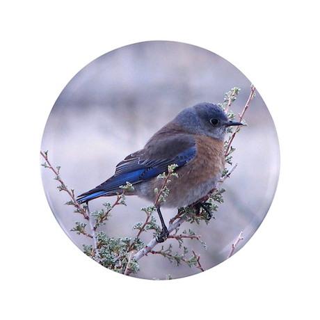 """bluebird on a branch 3.5"""" Button"""
