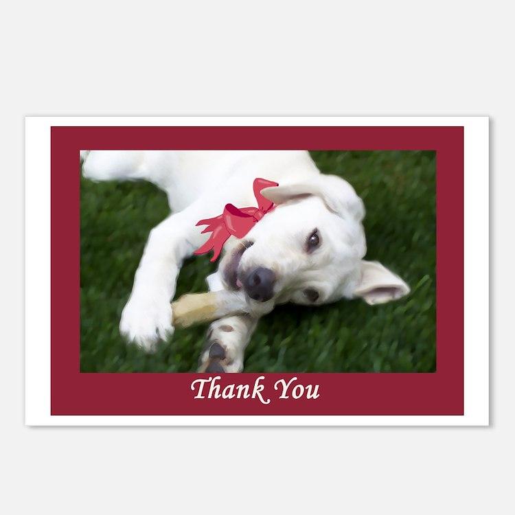 Yellow Labrador Puppy Thank You Postcards (8)