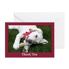 RR Yellow Labrador Puppy Thank You Cards (10)