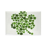 Irish Shamrocks in a Shamrock Rectangle Magnet (10