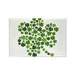 Irish Shamrocks in a Shamrock Rectangle Magnet