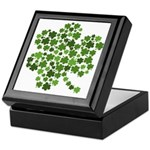 Irish Shamrocks in a Shamrock Keepsake Box